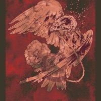 Baroness : Morphine Hawk - レッド エディション